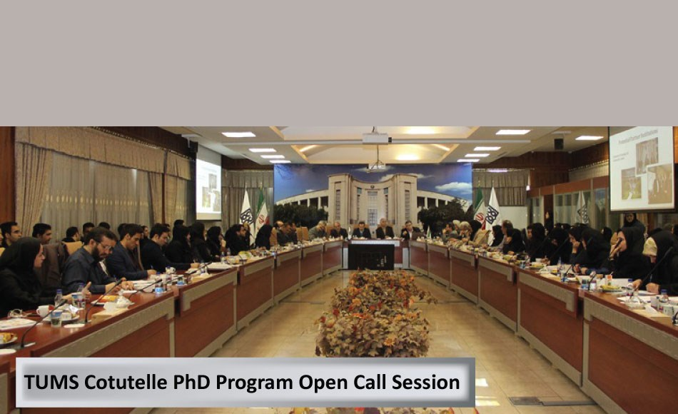 Cotutelle PhD Program Open Call Session